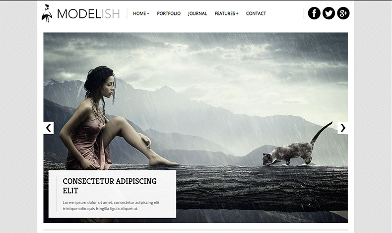 Modelish WordPress Theme